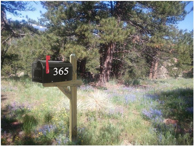 365 mailbox blog